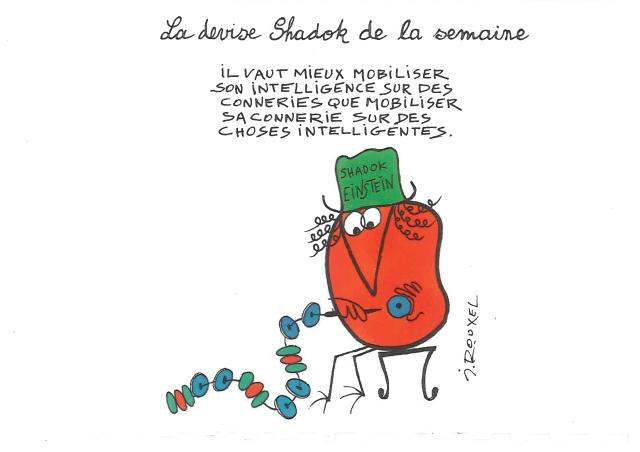 2013-01-04-Intelligence