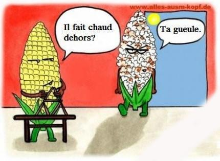pop corn canicule