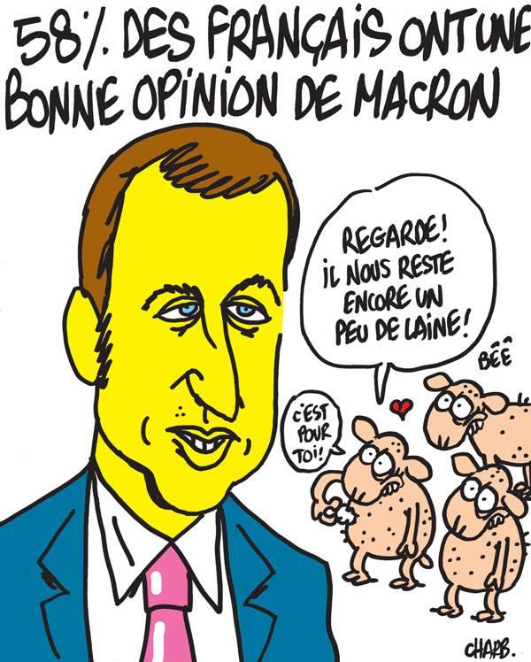 caricature-macron-bonne-opinion