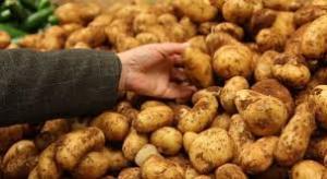 patatesimages